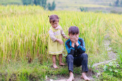 H ` mong mniejszości etnicznej dzieci na Październiku 16, 2016 w Laocai, Wietnam Zdjęcie Royalty Free