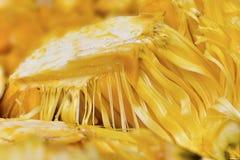 H? muitas carnes do durian a comer fotos de stock royalty free
