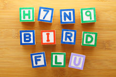 H7N9 bird flu toy block Royalty Free Stock Photos