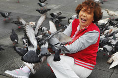 H7N9 threat in Taiwan Royalty Free Stock Image