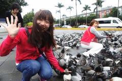 H7N9 zagrożenie w Tajwan Fotografia Royalty Free