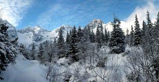 höga panoramatatras Arkivfoton