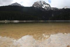 H?rlig Durmitor nationalpark Meded maximum och svart sj?, Crno jezero, Zabljak royaltyfri fotografi