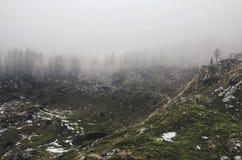 H?rlig gr?n kulle med skogen och hisnande moln royaltyfri fotografi