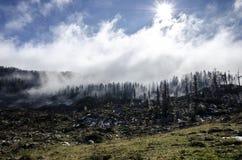 H?rlig gr?n kulle med skogen och hisnande moln arkivfoton