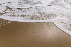 H?rlig havv?g p? den sandiga stranden royaltyfri foto