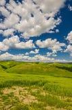 H?rlig panorama av det naturliga bygdlandskapet i Tuscany, Italien arkivfoton