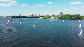 h?rlig panorama- sikt Små segelbåtar på floden, konkurrens regatta Springa segla sportdomstolar utbildning stock video