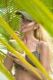 H?rlig sexig flicka i bikinin som poserar p? den karibiska stranden och rymmer en kokosn?t royaltyfria foton