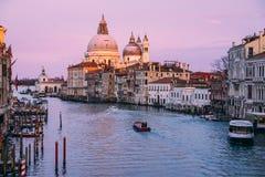 H?rlig sikt p? basilikadi Santa Maria della Salute i guld- aftonljus p? solnedg?ngen i Venedig, Italien fotografering för bildbyråer