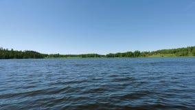 H?rlig sikt p? sj?n p? sommardag Mörk sjövattenyttersida, gröna högväxta träd och blå himmel Sverige, arkivfilmer