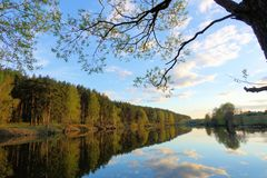 H?rlig solnedg?ng p? skogsj?n oklarheter reflekterat vatten royaltyfri foto