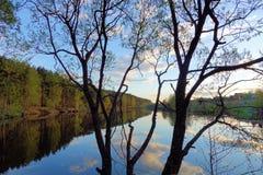 H?rlig solnedg?ng p? skogsj?n oklarheter reflekterat vatten royaltyfria foton