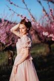 H?rlig ung flicka under det blomma rosa tr?det arkivbilder