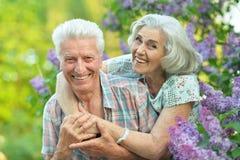 H?rliga h?ga par som kramar i, parkerar royaltyfria bilder