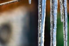 H?rliga, genomskinliga och rena istappar p? solnedg?ngen av vintersolen Hala, kalla och sl?ta modeller av naturen royaltyfri fotografi