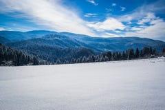 H?rliga vinterlandskap med skogen, tr?d och solen En vinter och en solig dag p? berget Bl? sky i bakgrunden royaltyfri foto