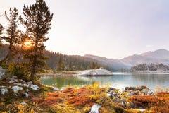 H?st lake royaltyfri bild