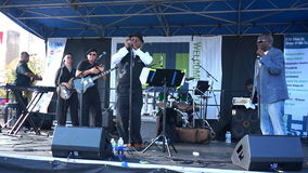 H Street Festival Blues Harmonica Player stock footage