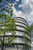 Hôtel de ville avec l'arbre et le ciel Image stock