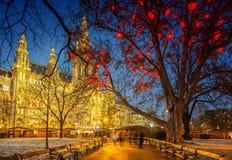 Hôtel de ville de Vienne Photographie stock libre de droits