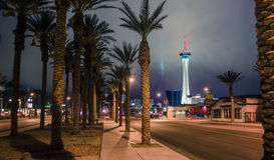 Hôtel et palmiers de stratosphère à Las Vegas Photos libres de droits