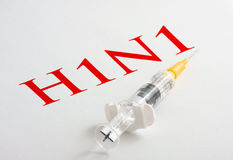 H1N1 Influenza Virus Royalty Free Stock Image