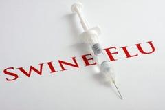 H1N1 Influenza Virus royalty free stock photo