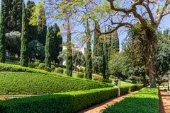 HAÏFA, ISRAËL 25 MARS 2018 : Les terrasses de la foi de Bahai gren le parc au printemps image stock