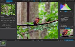 Hałas redukcji oprogramowanie, DxO Photolab obrazy stock