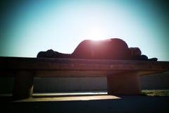 Ha bevuto i resti adulti sul banco pietroso in parco, raggi taglienti dell'uomo del sole Fotografie Stock Libere da Diritti