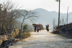 Ha Giang Vietnam - Februari 14, 2016: Den Ha Giang bergsikten med barn bär trä på baksida som hem heading på vägen Tack vare armo Royaltyfri Bild