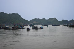 Ha Long Bay Royalty Free Stock Image