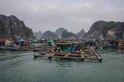 Ha Long bay floating village Stock Photo