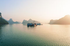 Ha long bay islands and boats in the morning Vietnam Stock Images