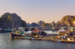 Ha long Bay in Vietnam, Southeast Asia Royalty Free Stock Image