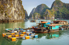 Ha long Bay in Vietnam, Southeast Asia Royalty Free Stock Images