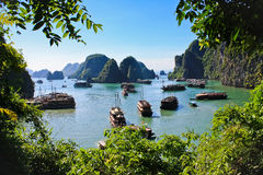 Ha Long Bay With Vietnamese Junks Royalty Free Stock Photography
