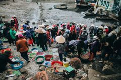 people buying and selling seafood in Ha Long, Vietnam Royalty Free Stock Image