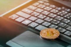 Ha morso la moneta sulla tastiera di computer con luce dell'investimento di successo fotografia stock