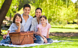 ha picknick för familjpark Royaltyfri Bild