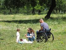 ha picknick rullstolen Arkivbilder