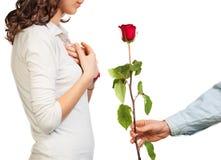 Ha presentato una rosa alla ragazza fotografia stock