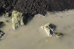 Ha puzzato con acqua fangosa corrente Fotografia Stock Libera da Diritti