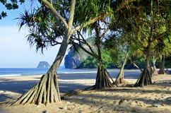 Haad Farang plaża na Mook wyspie Zdjęcia Stock