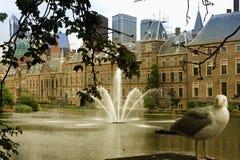 Haag är platsen av regeringen i Nederländerna Arkivbilder