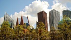 Haag horisont Royaltyfri Bild