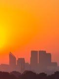 Haag i guld- ljus Arkivfoton