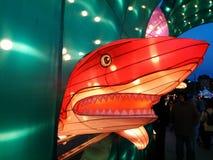Haai bij Chinees lantaarnfestival stock afbeeldingen