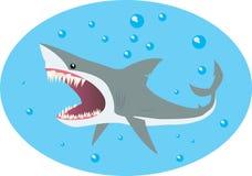 Haai en bellen Stock Afbeelding